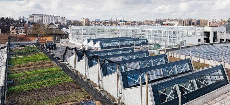 Visite guidée: La ferme urbaine des abattoirs d'Anderlecht
