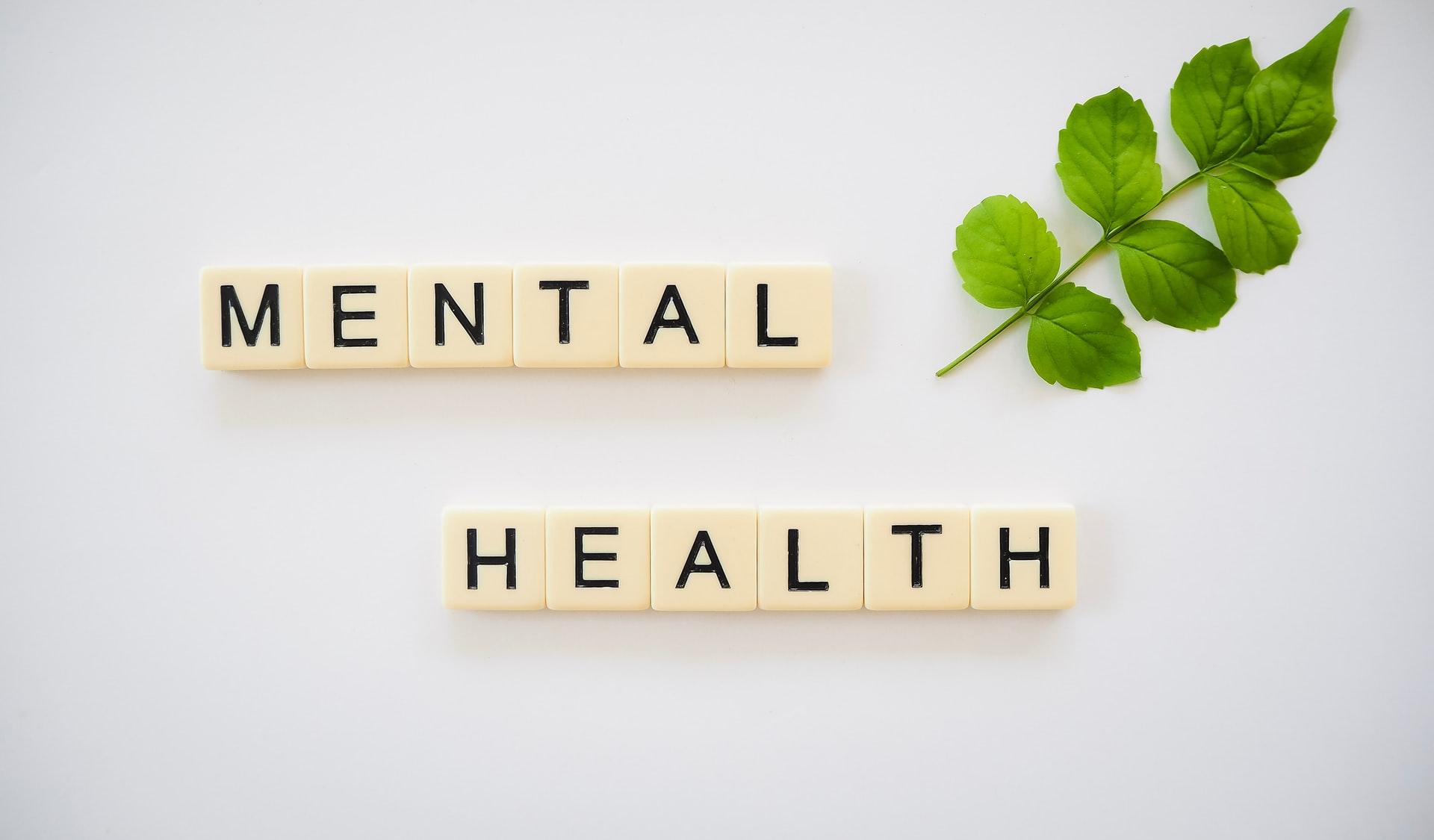 """Le suivi des recommandations de la """"Task force soins de santé mentale"""""""
